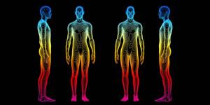 body scan sale